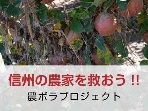 農ボラプロジェクト